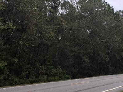 Residential Lots & Land For Sale: S Hwy 17a