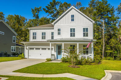 Summerville Single Family Home For Sale: 267 Donning Drive