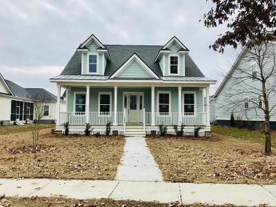 Ravenel Single Family Home For Sale: 4064 Capensis Lane #(Lot # 1