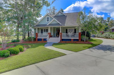 Charleston Single Family Home Contingent: 140 Brogun Lane