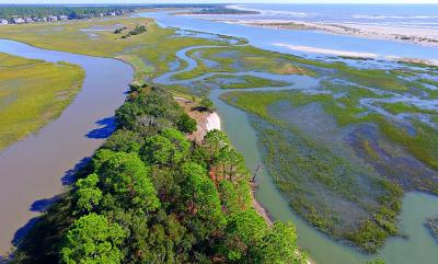 Seabrook Island Residential Lots & Land For Sale: 1172 Oyster Catcher Court