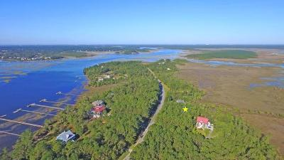 Awendaw Residential Lots & Land For Sale: 4597 Cape Island Drive