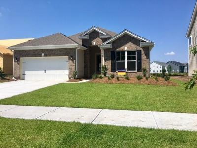 Johns Island Single Family Home For Sale: 510 Woodbury Drive