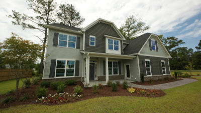Johns Island Single Family Home For Sale: 144 Woodbury Drive