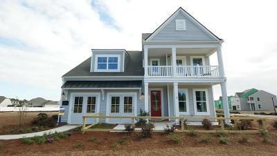 Johns Island Single Family Home For Sale: 117 Woodbury Drive