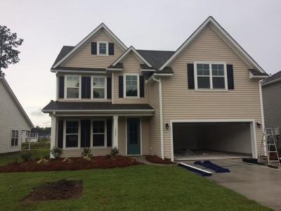 Johns Island Single Family Home For Sale: 119 Woodbury Drive