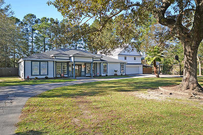 Moncks Corner Single Family Home For Sale: 369 Compton Dr