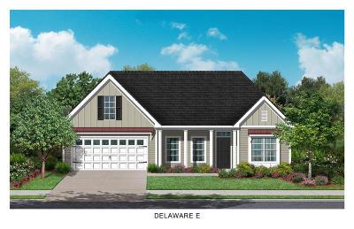 Single Family Home For Sale: 112 Olivia Marie Lane