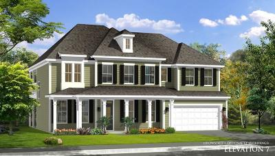 Moncks Corner Single Family Home Contingent: 419 Stonefield Circle