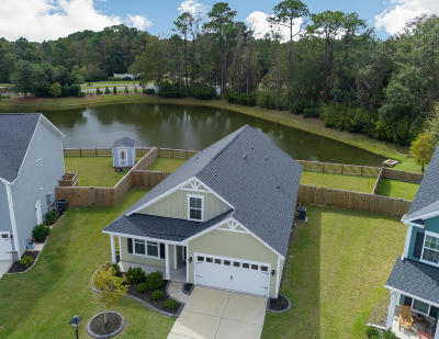 Charleston Single Family Home For Sale: 742 Goodlet Circle