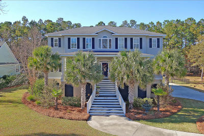 Summerville Single Family Home For Sale: 5275 Alpine Drive