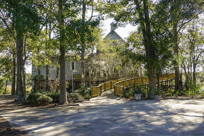 Berkeley County, Charleston County, Colleton County, Dorchester County Single Family Home For Sale: 4399 Lord Proprietors Road