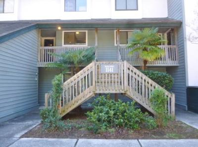 Charleston County Attached For Sale: 1141 Shadow Lakes Circle #C