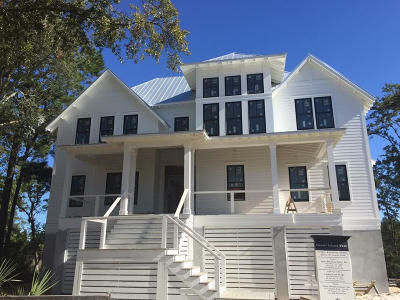 Charleston Single Family Home For Sale: 457 Lesesne Street