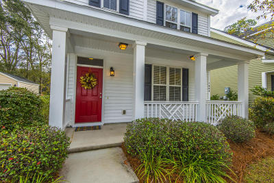 Johns Island Single Family Home Contingent: 1688 Bee Balm Road
