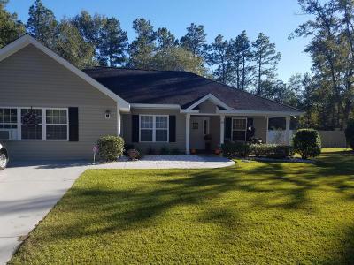 Walterboro Single Family Home For Sale: 153 Estates Drive