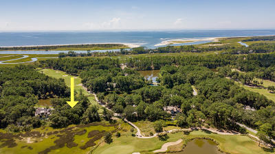 Kiawah Island Residential Lots & Land For Sale: 203 Black Tupelo Lane