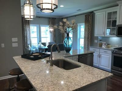 Johns Island Single Family Home For Sale: 1048 Pigeon Point