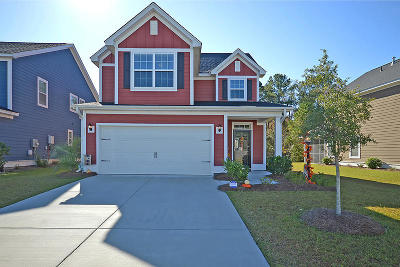 Single Family Home For Sale: 483 Nelliefield Trail