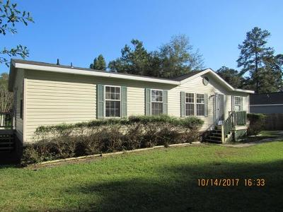 Summerville Single Family Home For Sale: 817 N Palmetto Street