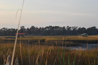 Johns Island Residential Lots & Land For Sale: 2688 Bohicket Road
