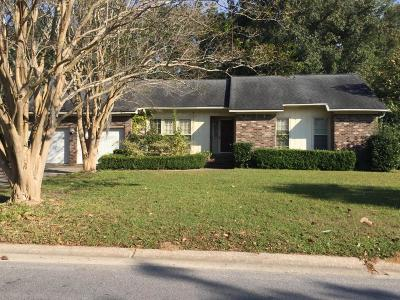 Mount Pleasant Single Family Home For Sale: 995 Law Lane