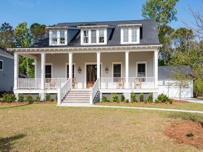 Mount Pleasant Single Family Home For Sale: 1843 Carolina Park Boulevard