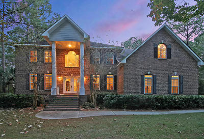 Mount Pleasant Single Family Home For Sale: 2105 Williams Veneer Court
