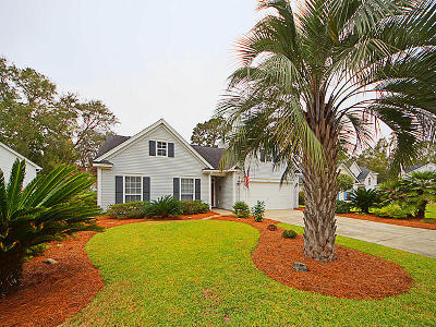 Mount Pleasant Single Family Home For Sale: 472 Old Carolina Court