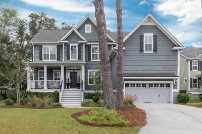 Mount Pleasant Single Family Home For Sale: 1413 Scotts Creek Circle