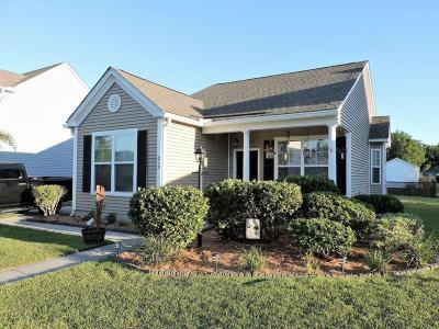 Moncks Corner Single Family Home For Sale: 215 Killarney Trail