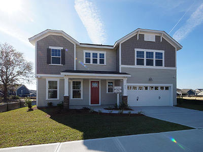 Moncks Corner Single Family Home For Sale: 405 Ambergate Lane