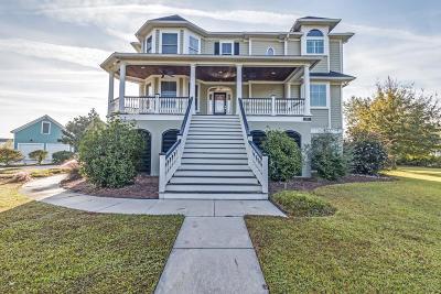 Charleston Single Family Home For Sale: 1254 Blue Sky Lane
