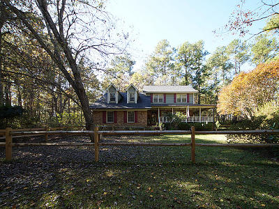 Summerville Single Family Home For Sale: 141 Beliks Way