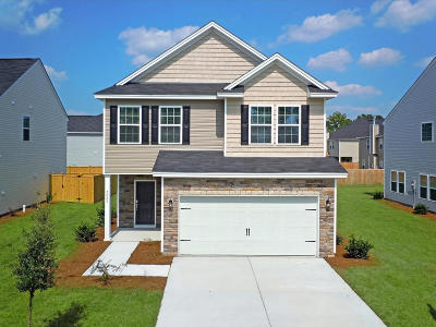 Moncks Corner Single Family Home For Sale: 215 Lazy River Lane