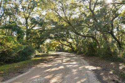 Wadmalaw Island Residential Lots & Land For Sale: Cherry Point Road