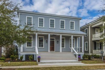 Mount Pleasant Single Family Home For Sale: 1467 Blue Cascade Drive