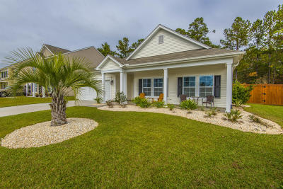 Goose Creek Single Family Home For Sale: 206 Pagoda Tree Drive