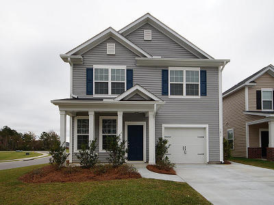 Summerville Single Family Home For Sale: 1673 Eider Down Drive