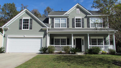 Charleston Single Family Home For Sale: 165 Evening Shade Drive