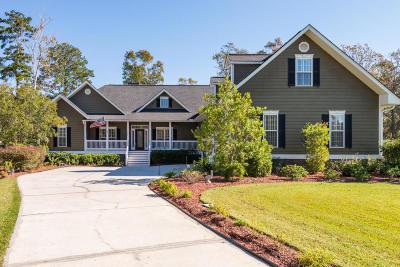 Charleston Single Family Home For Sale: 127 Brogun Lane