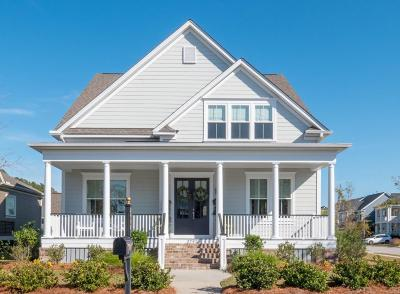 Mount Pleasant, Isle Of Palms, Daniel Island, Awendaw Single Family Home For Sale: 2797 River Vista Way