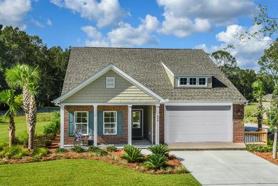 Charleston Single Family Home For Sale: 734 Byrd Garden Road