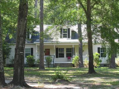 Walterboro Single Family Home For Sale: 651 Ulmer Lake Drive