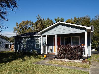Charleston Single Family Home For Sale: 62 Anita Drive
