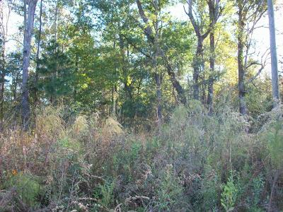 Residential Lots & Land For Sale: Pineland Street