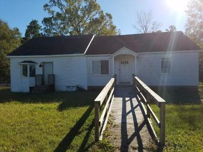 Moncks Corner Single Family Home For Sale: 419 Altman Street