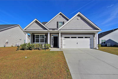North Charleston Single Family Home For Sale: 8004 Regency Elm Drive