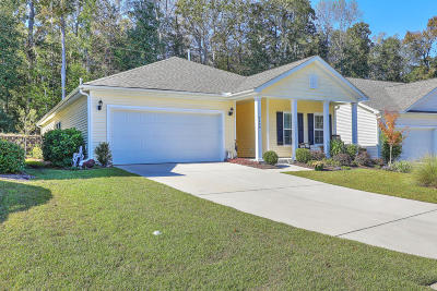 North Charleston Single Family Home For Sale: 2689 Hanford Mills Lane