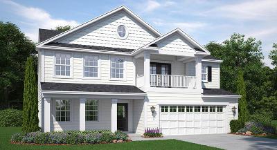 Goose Creek Single Family Home For Sale: 243 Wathen Drive
